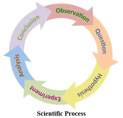 Image of the Scientific Process