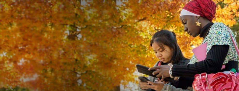 International students studying outside in the fall