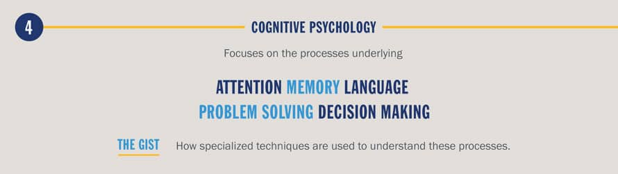 PsychologyInfographicCognitive